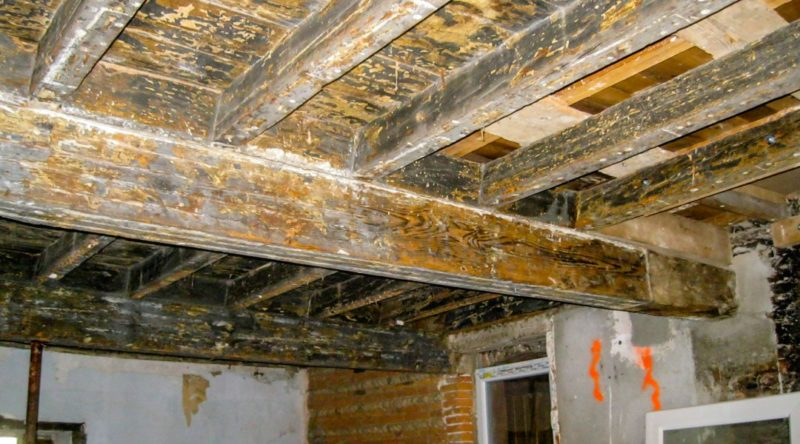 expertise plancher toulouse